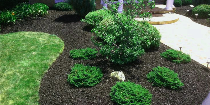 landscaping georgetown ky